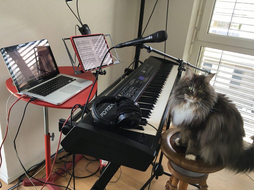 Skype set up mit Katze